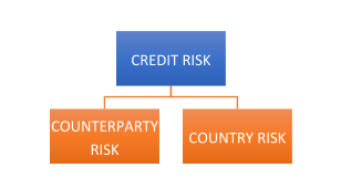 Credit Risk - Indian Banking Sector