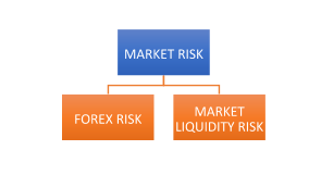 Indian Banking Sector - Market Risk
