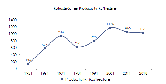 Robusta Coffee Productivity in India